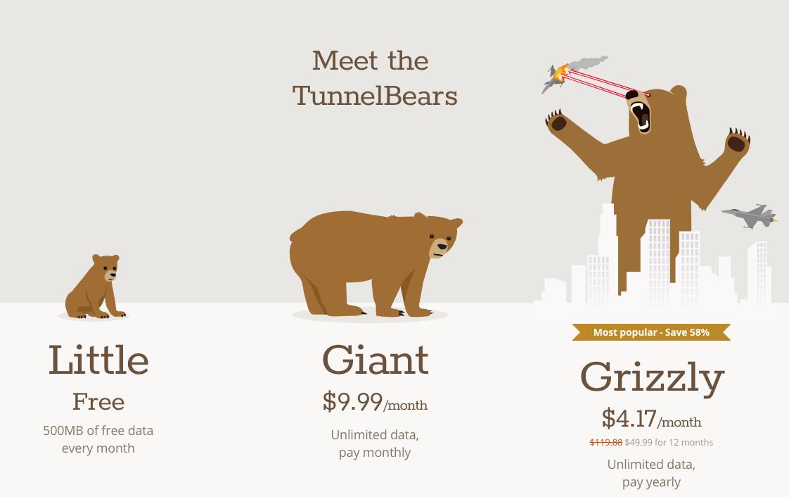 hoe werkt tunnelbear