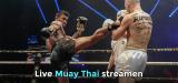Muay Thai live stream bekijken met VPN 2021